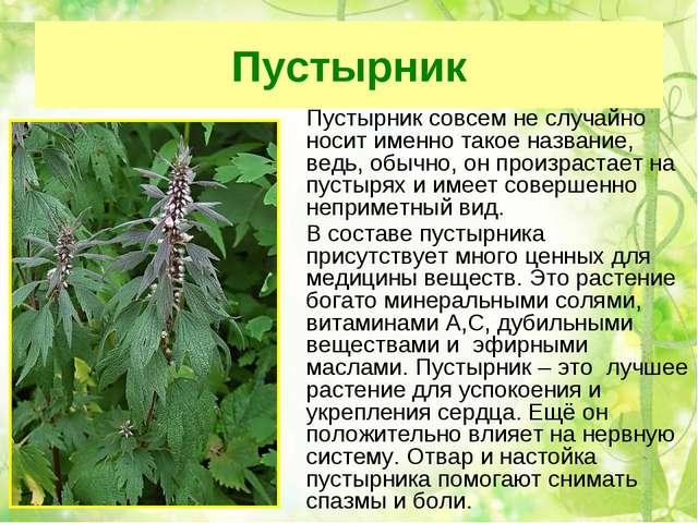 лечебные описанием травы фото с