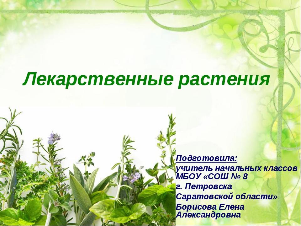 Лекарственные растения Подготовила: учитель начальных классов МБОУ «СОШ № 8 г...