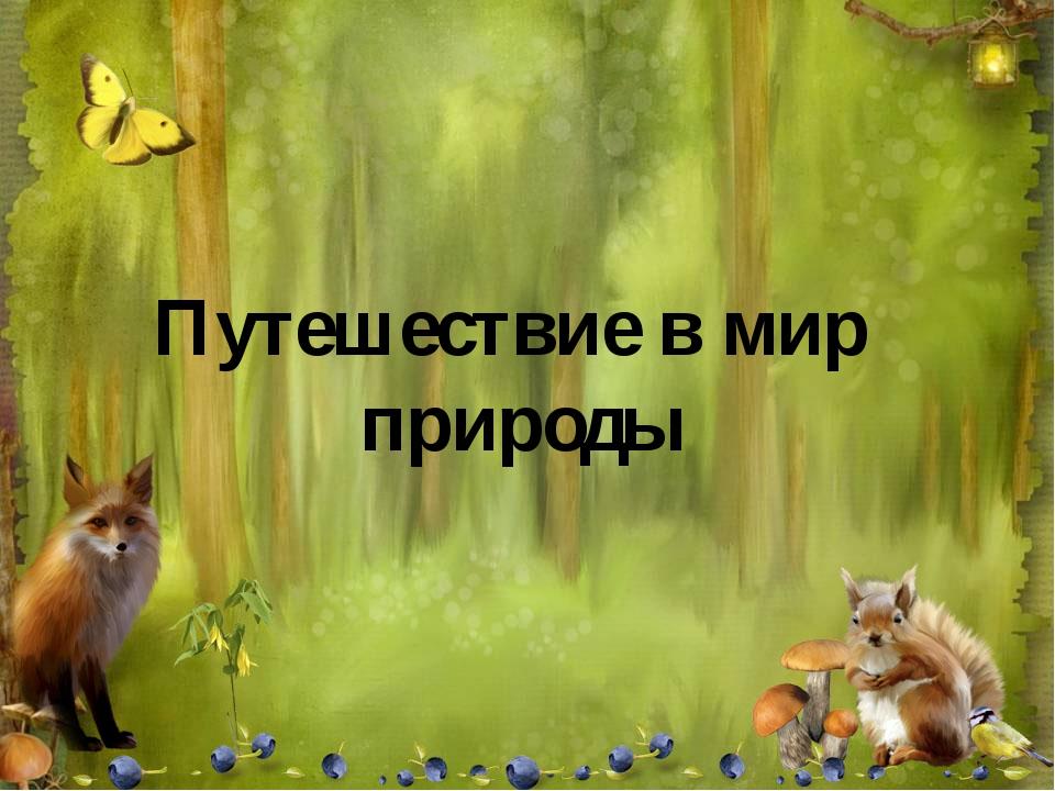 Путешествие в мир природы