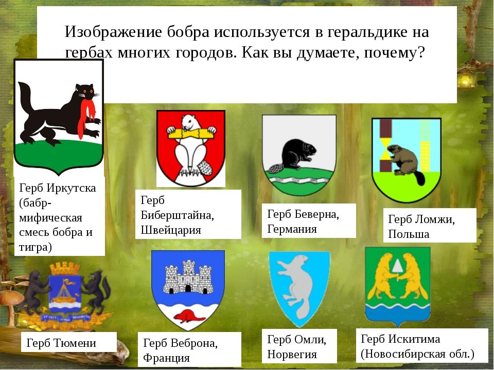 Изображение бобра используется в геральдике на гербах многих городов. Как вы...