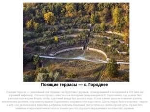 Поющие террасы — с. Городнее Поющие террасы — уникальный для Украины сад фрук