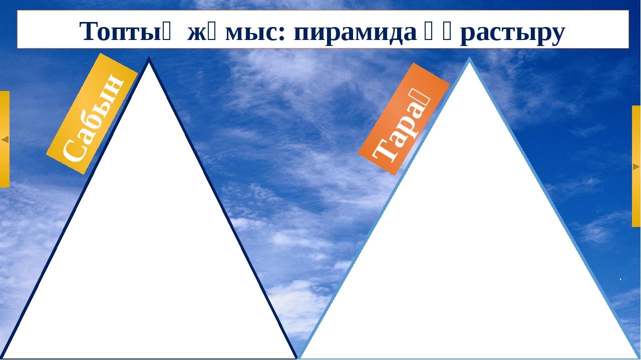 Топтық жұмыс: пирамида құрастыру Тарақ Сабын
