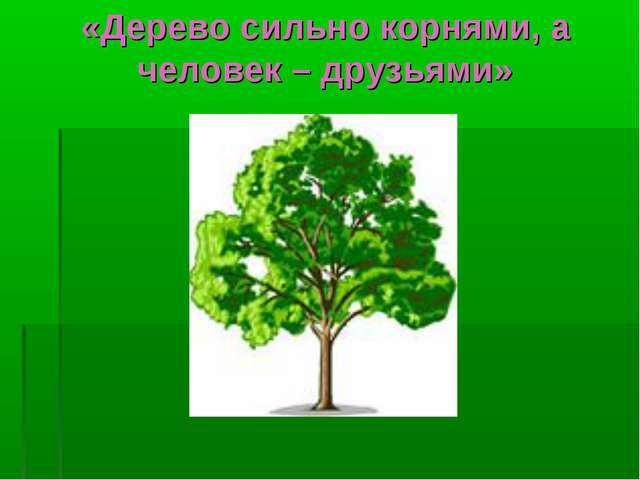 «Дерево сильно корнями, а человек – друзьями»