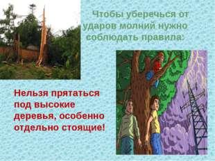 Нельзя прятаться под высокие деревья, особенно отдельно стоящие! Чтобы убереч