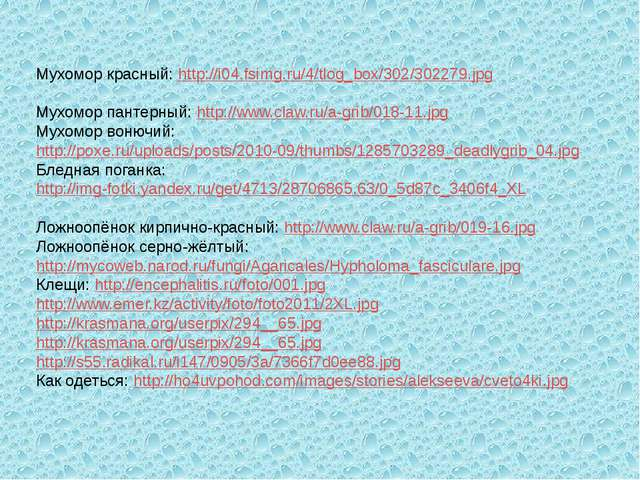 Мухомор красный: http://i04.fsimg.ru/4/tlog_box/302/302279.jpg Мухомор панте...