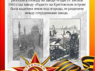 Детство Эльвиры Серафимовны МИХАЙЛОВОЙ тоже пришлось на время блокады. Эльвир