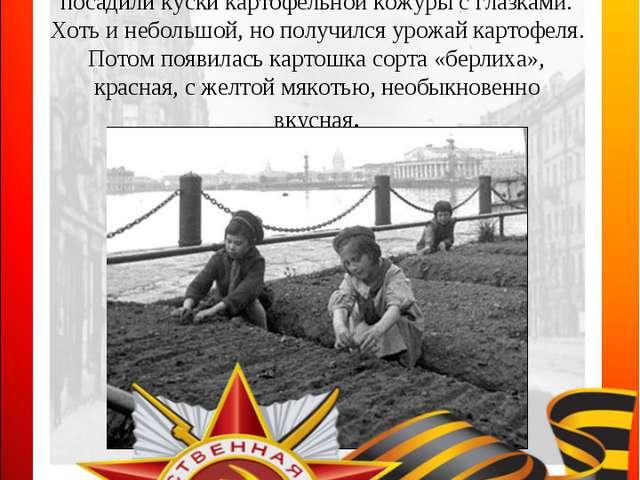 Вера Осиповна жила в прифронтовой полосе — в самом конце Рощинской улицы. Ряд...