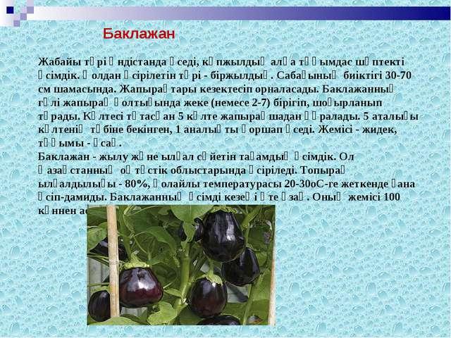 Жабайы түрі Үндістанда өседі, көпжылдық алқа тұқымдас шөптекті өсімдік. Қолда...