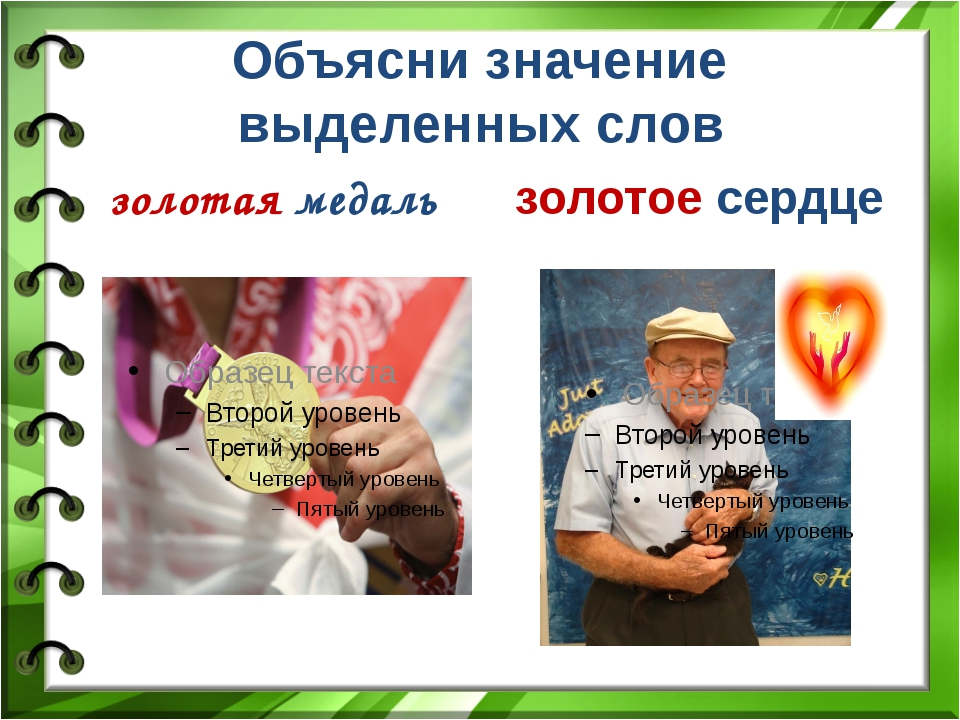 Объясни значение выделенных слов золотая медаль золотое сердце