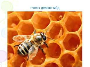 пчелы делают мёд