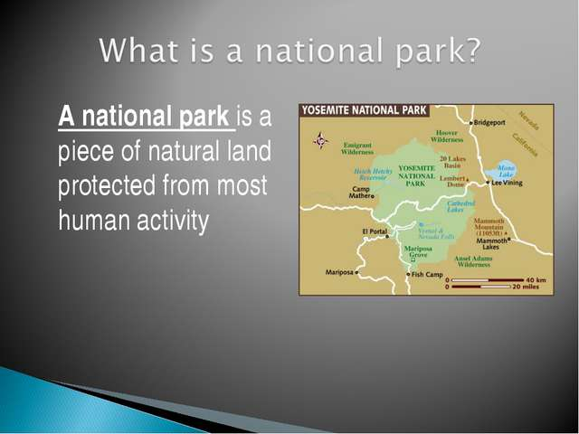 A national park is a piece of natural land protected from most human activity