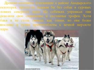 Древние охотники, кочевавшие в районе Анадырского плоскогорья, просто не выж