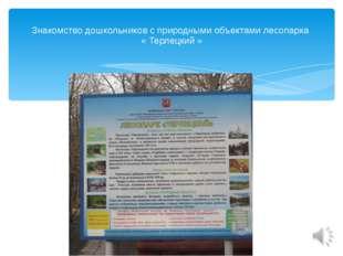 Знакомство дошкольников с природными объектами лесопарка « Терлецкий »