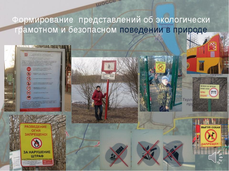 Формирование представлений об экологически грамотном и безопасном поведении в...