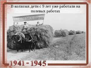 В колхозах дети с 9 лет уже работали на полевых работах