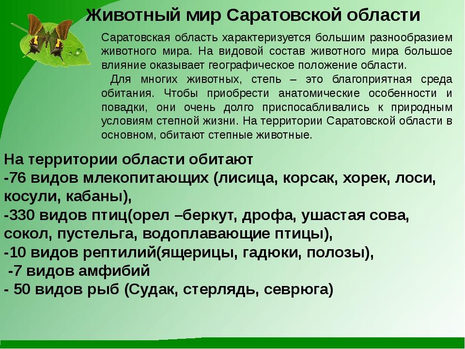 Животный мир Саратовской области Саратовская область характеризуется большим...