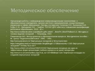 Организация работы с информационно-коммуникационными технологиями в образов
