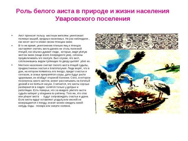 Роль белого аиста в природе и жизни населения Уваровского поселения Аист прин...