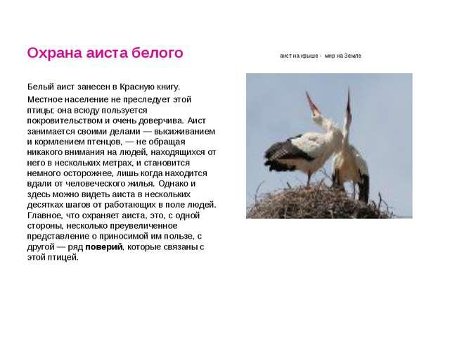 Охрана аиста белого аист на крыше - мир на Земле Белый аист занесен в Красную...