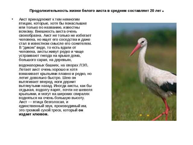 Продолжительность жизни белого аиста в среднем составляет 20 лет. Аист прина...