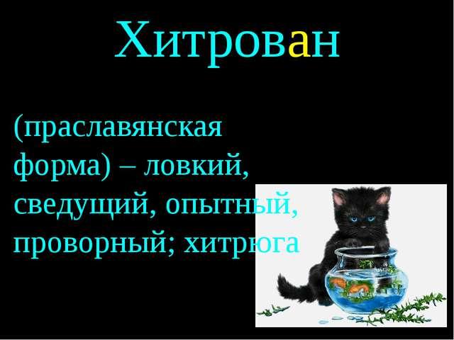 Хитрован (праславянская форма) – ловкий, сведущий, опытный, проворный; хитрюга