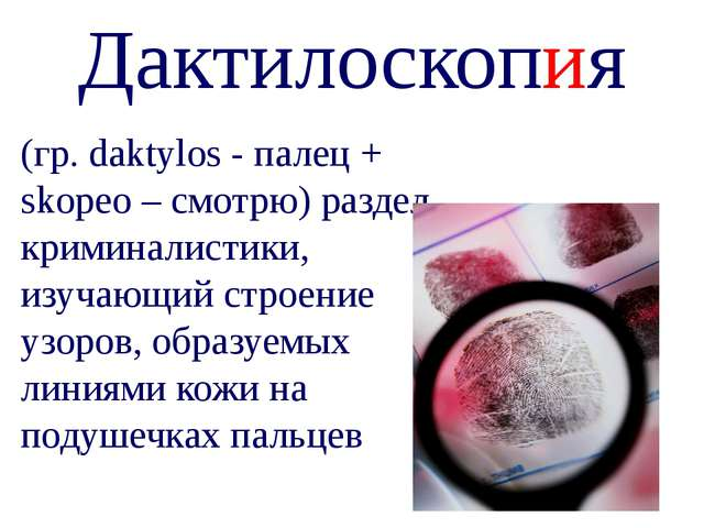 Дактилоскопия (гр. daktylos - палец + skopeo – смотрю) раздел криминалистики,...
