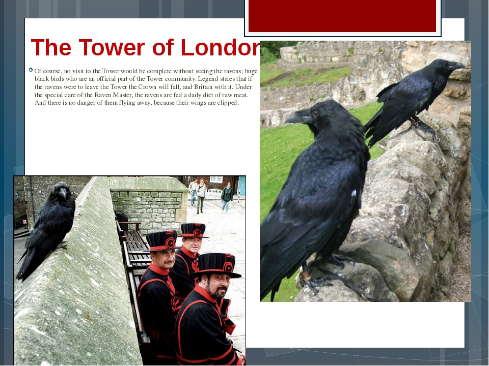 The Tower of London Of course, no visit to the Tower would be complete withou...