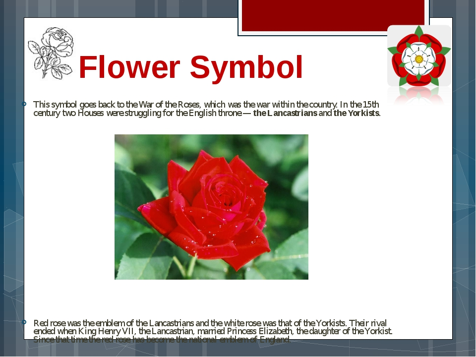 Flower Symbol This symbol goes back to the War of the Roses, which was the wa...