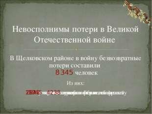В Щелковском районе в войну безвозвратные потери составили 8 345 человек Нево