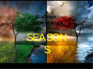 Шаблон презентации SEASONS