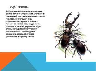Окраска тела коричневато-черная. Длина тела от 30 до 83мм. Обитает в равнинн