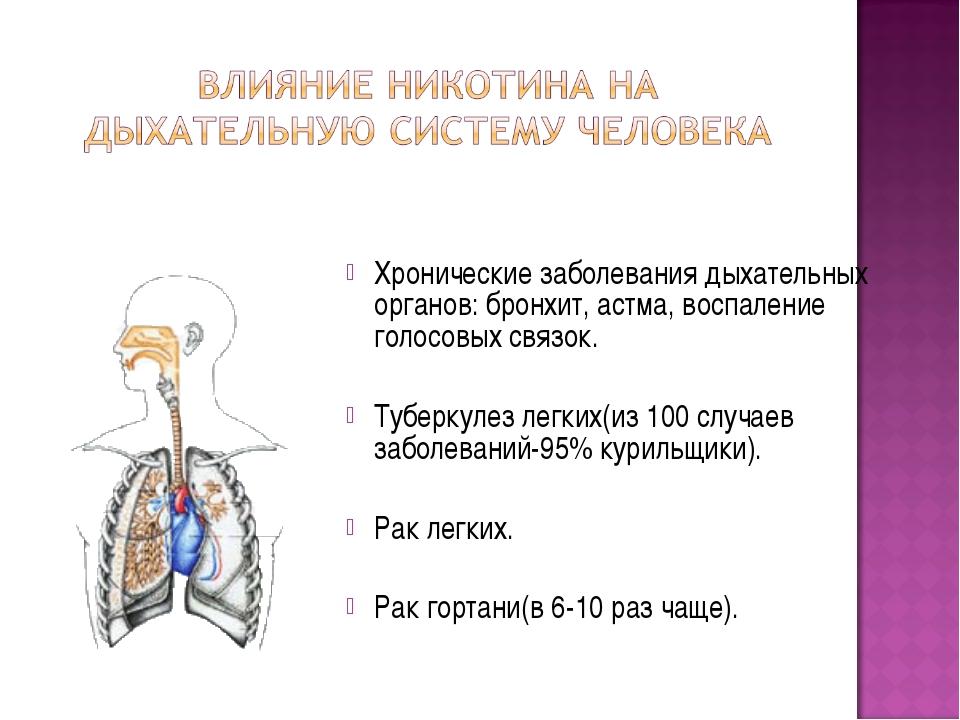 Хронические заболевания дыхательных органов: бронхит, астма, воспаление голос...