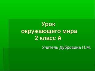 Урок окружающего мира 2 класс А Учитель Дубровина Н.М.
