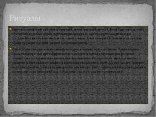 Блот исполнялся и как общественный, и как частный ритуал. Блот (др.-сканд.bl