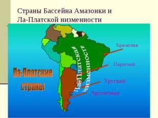 Страны Бассейна Амазонки и Ла-Платской низменности
