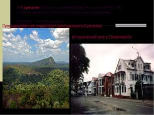В Суринамезначатся 2 наименования это составляет 0,2%. 1 объект включен в с