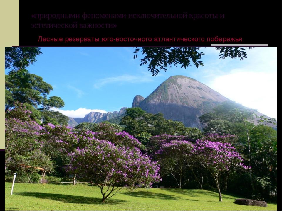 «природными феноменами исключительной красоты и эстетической важности» Лесные...