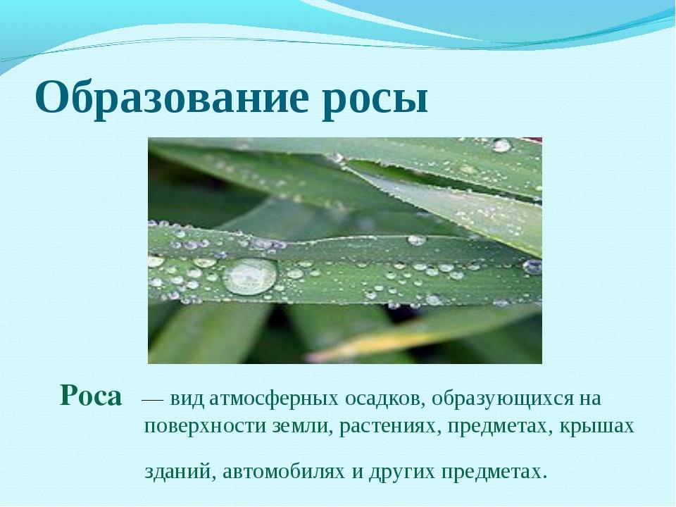 Образование росы Роса́— вид атмосферных осадков, образующихся на поверхности...