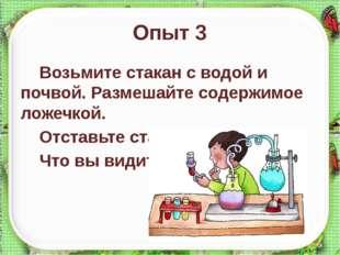 Опыт 3 Возьмите стакан с водой и почвой. Размешайте содержимое ложечкой. Отст