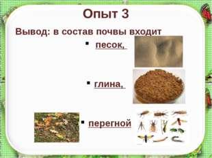 Опыт 3 Вывод: в состав почвы входит песок, глина, перегной http://aida.ucoz.ru