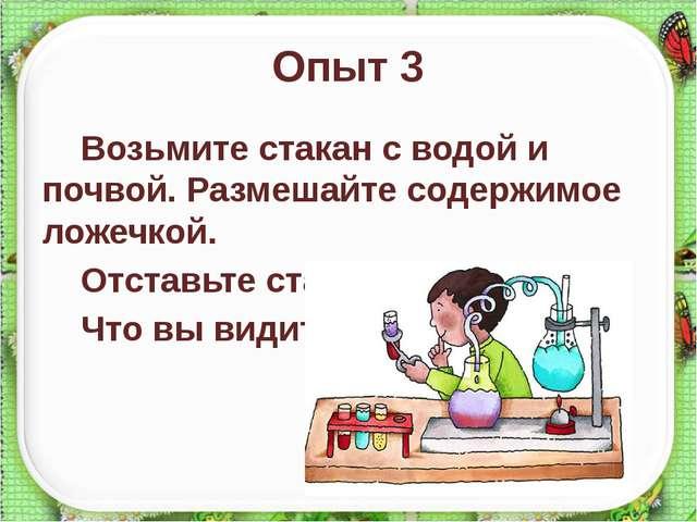 Опыт 3 Возьмите стакан с водой и почвой. Размешайте содержимое ложечкой. Отст...
