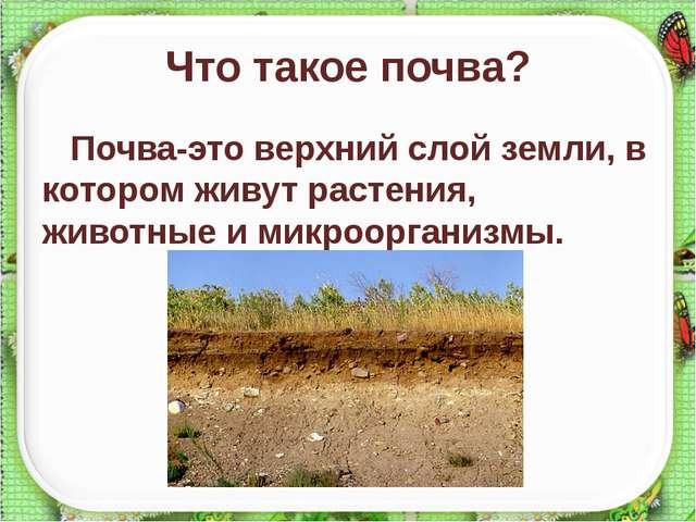 Что такое почва? Почва-это верхний слой земли, в котором живут растения, живо...