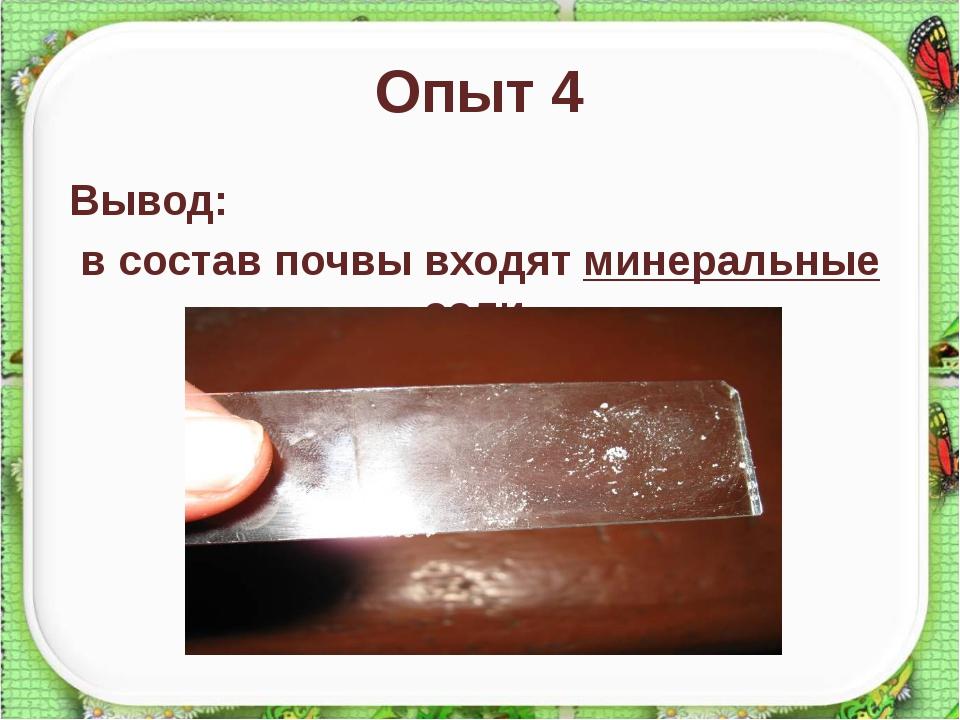Опыт 4 Вывод: в состав почвы входят минеральные соли. http://aida.ucoz.ru