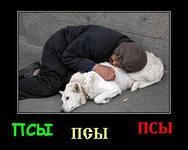 http://im6-tub-ru.yandex.net/i?id=128925691-24-72&n=21