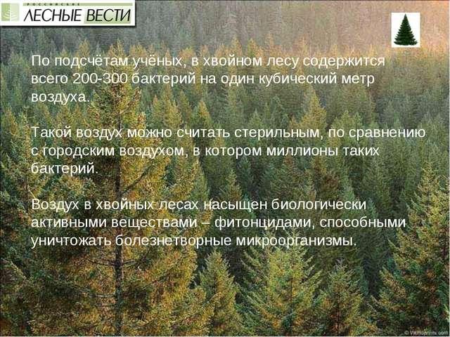 По подсчётам учёных, в хвойном лесу содержится всего200-300 бактерий на один...