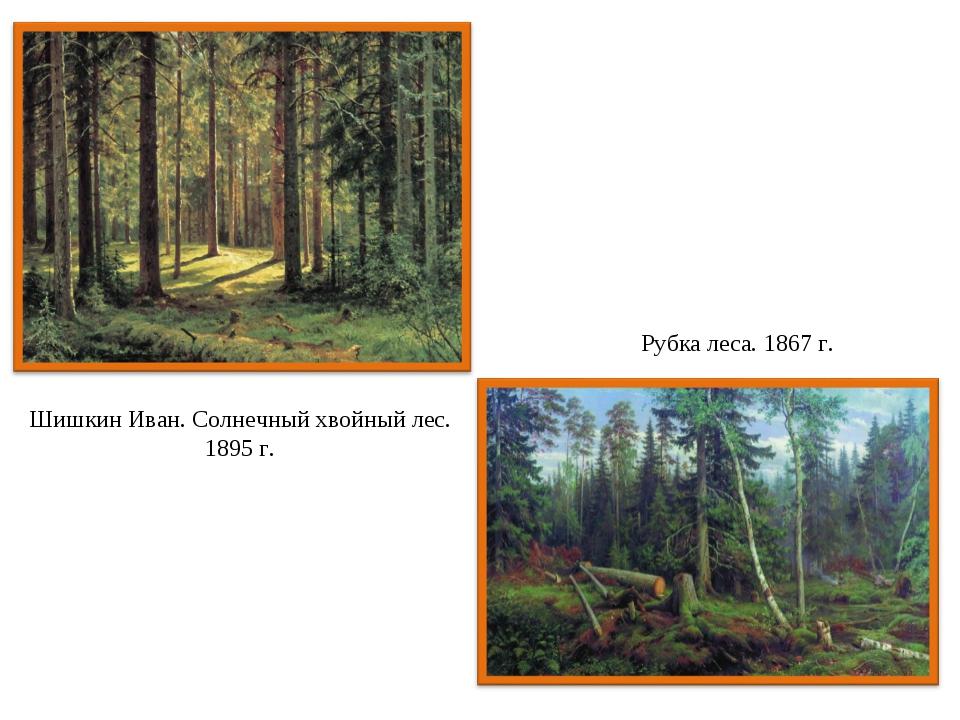 Шишкин Иван. Солнечный хвойный лес. 1895 г. Рубка леса. 1867 г.