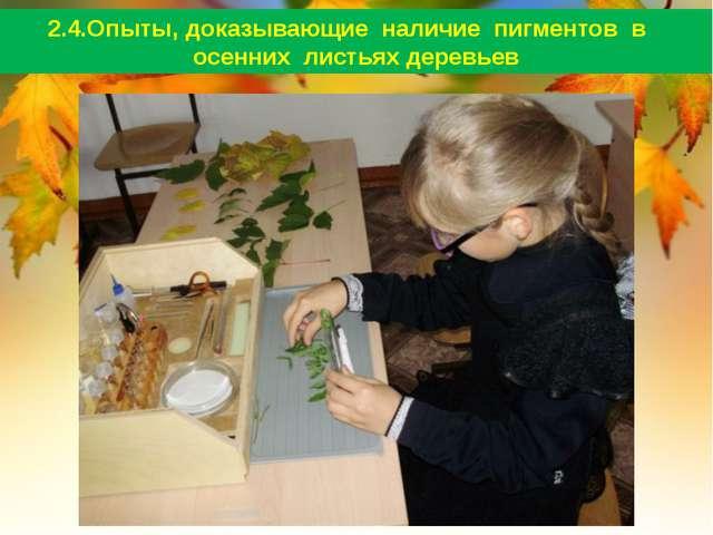 2.4.Опыты, доказывающие наличие пигментов в осенних листьях деревьев
