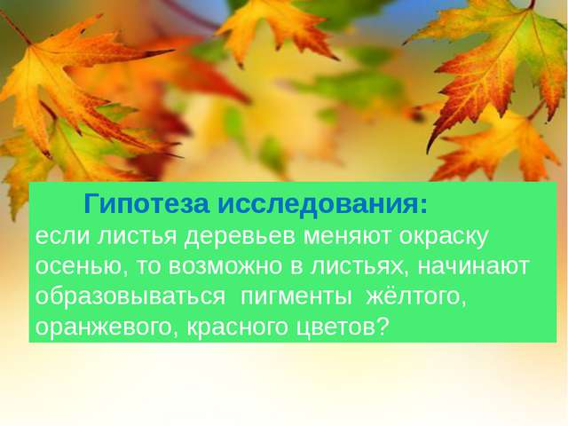 Гипотеза исследования: если листья деревьев меняют окраску осенью, то возмож...