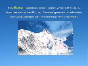 Гора Белуха – наивысшая точка Горного Алтая (4506 м). Здесь берет свое начало