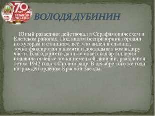 Юный разведчик действовал в Серафимовическом и Клетском районах. Под видом б